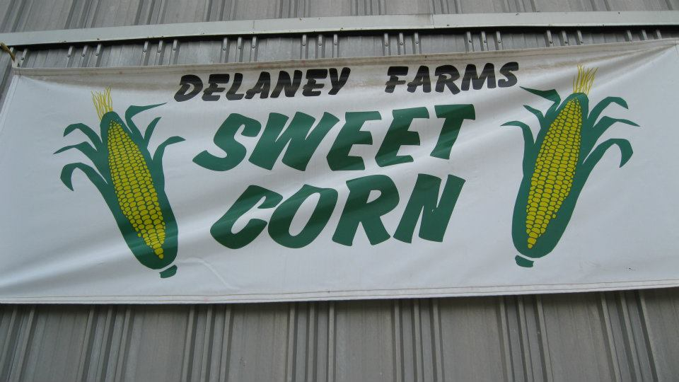 delaney-farms-sweet-corn-syracuse